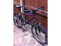 Mountin suspension bike