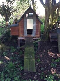 Hen house with automatic door and timer