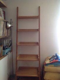 Step ladder shelving