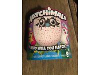 Pink hatchimal brand new
