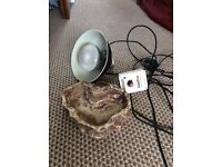 Reptile heat lamp and habistat temperature thermostat and reptile bowl