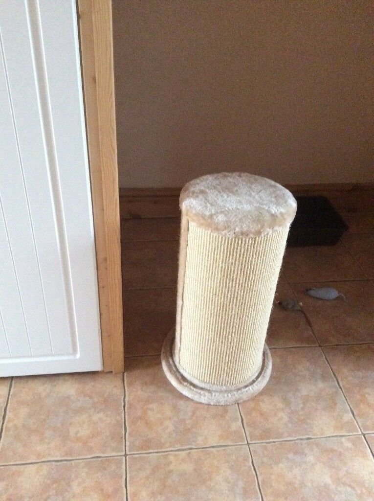 Never been used large cat scratch post