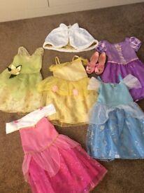 Disney Princess Dress Collection