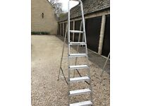 Step ladder tall