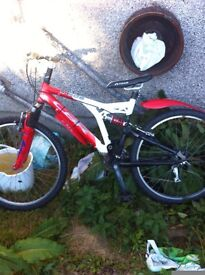 Push bike mountain bike