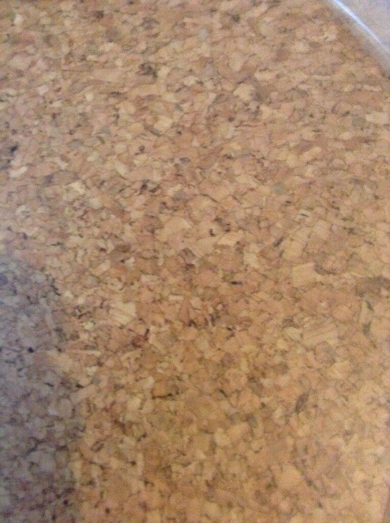Cork Flooring Laminate Style Floating Floor