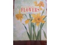 In Touch with Flowers Magazines in 4 binders