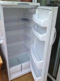 Large capacity fridge