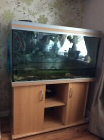 Fish tank quick sale, good condition £150