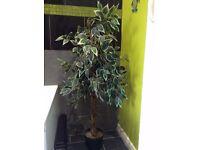 "**££££ WAITING** WANTED - Artificial Tree / Plants Indoor or Outdoor. sizes between 12"" - 48"""
