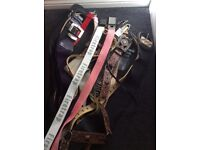 20 Assorted women's belts size 8-12 used