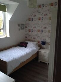 Lovely single room to rent in shared family house