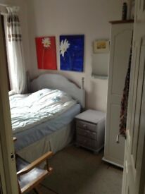 Bright cosy double room available on a temporary basis