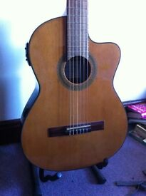 Ibanez Electro Acoustic Guitar