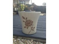Beautiful Large Roses Plant Pot
