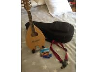 Mandolin with case and mandolin stand - excellent condition