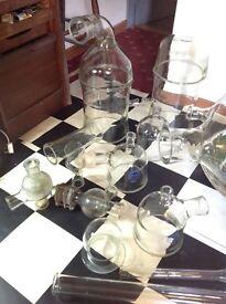 Vintage laboratory glass, Pyrex, QVF, plant vivarium