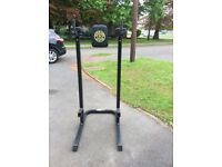 Freestanding Golds Gym Dip station