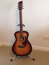 Brunswick Dreadnought Acoustic GUITAR/Sunburst