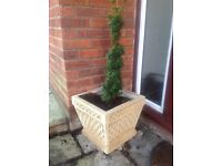 8 x Patio Stone Planters, for sale separately.