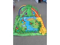 Fisher Price Baby Jungle Gym