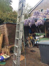 Set of ladders