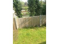 Fence panels 6ft wide x 3ft tall, x 11
