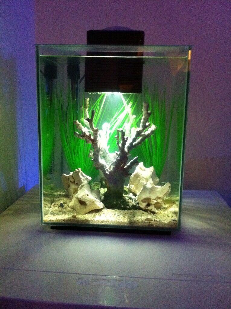 Fluval chi 19 litre nano aquarium fish tank complete setup for Fluval chi fish tank