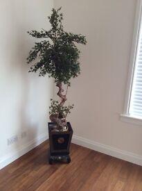 "Bonsai Tree 'artificial"""
