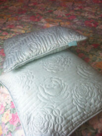 FEATHER CUSHIONS x 2 + covers. Good condition.