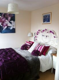 Double Room + En suite to rent