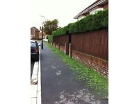 GARDENER- NEED YOUR GRASS OR HEDGES TRIMMED AND MORE!!!