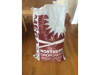 HUGE bag of Hamster/gerbil/small animal Bedding (85L)
