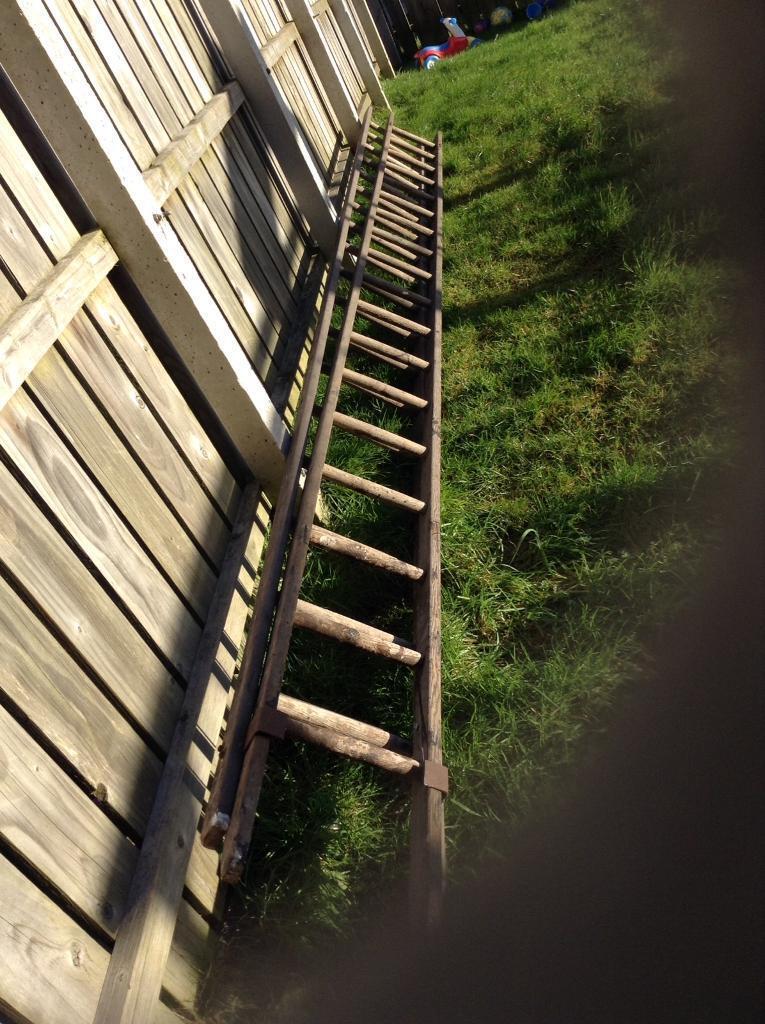 30ft Ladder In Bangor County Down Gumtree