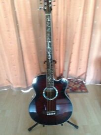 Michael Kelly Dragonfly 5string Acoustic Bass Guitar