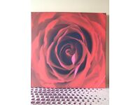 Timeless Red Rose canvas. Perfect gift for the one you love (or for yourself!)