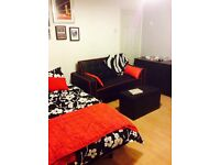 Black and red, faux leather, love seat/pull out bed