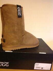Brand New in box Ladies Ugg 3/4 Ugg Boots