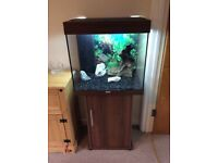 Juwel Lido 120 Fish Tank and Cabinet with T5 light Unit
