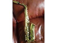Protege Alto Saxophone