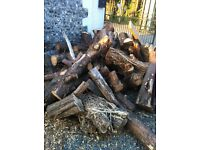Free to collector softwood tree stumps,various sizes- you will need a truck or trailer to remove