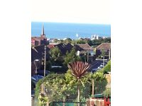 BRIGHTON 2/3 BEDROOM HOUSE WITH SEA VIEWS A1 ORDER