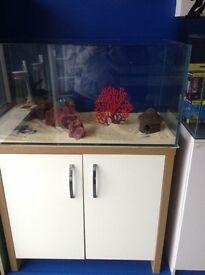 New White Opti glass aquarium and cabinet