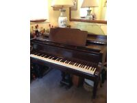 Waldberg Baby Grand Piano