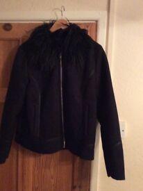 Dorothy Perkins Jacket size 16