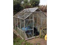 8 x 6 Greenhouse FREE