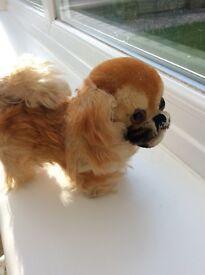 Vintage Steiff Pekingese Dog