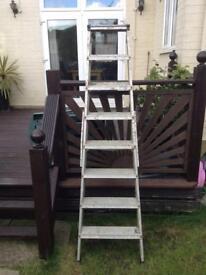 Builders steps