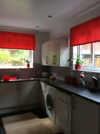Matching pair of red roller blinds. Modern clematis design in grey.