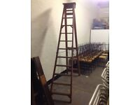 LARGE 12 TREAD WOODEN STEP LADDERS